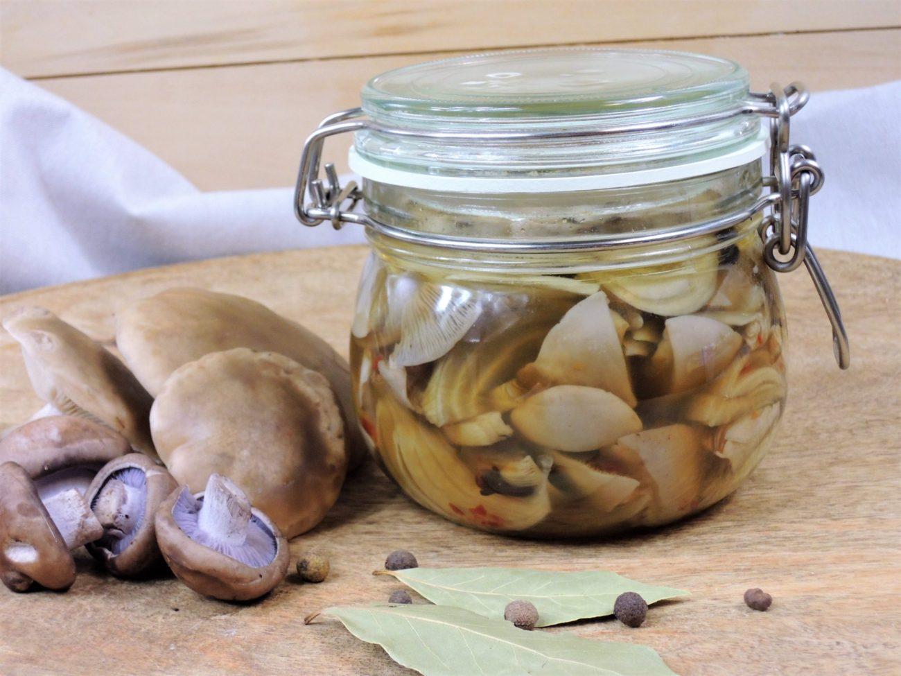 Nakládané čirůvky – houbové zavináče
