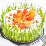 Slaný jarní cheesecake